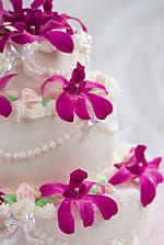 Smoky Mtn Gatlinburg And Pigeon Forge Wedding Cakes